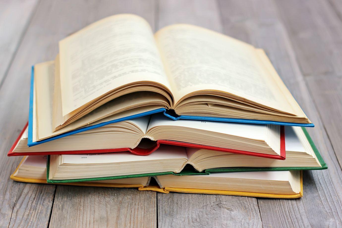 Fundação Cultural realiza Festa Literária