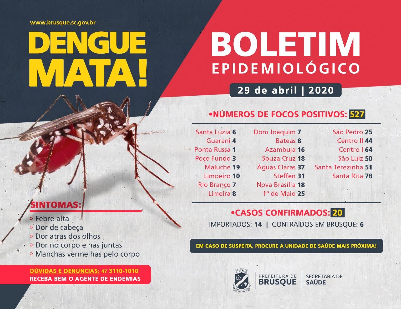 Brusque possui 20 casos confirmados de dengue