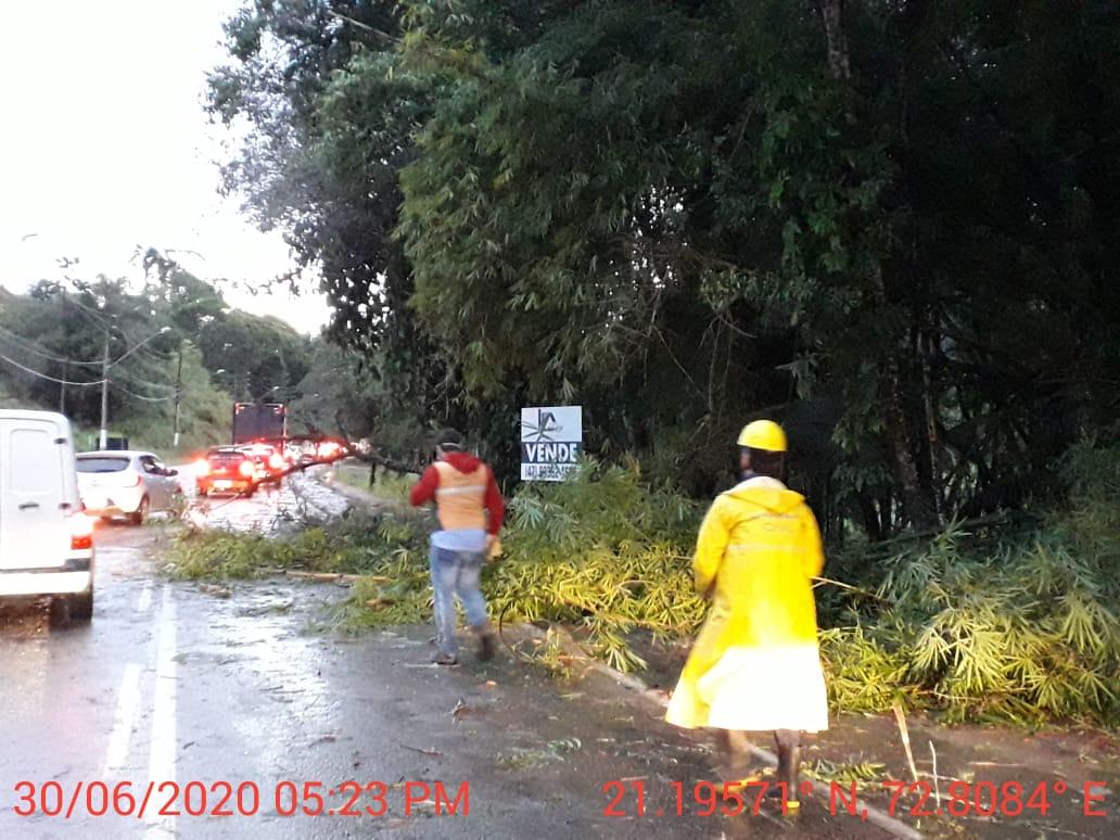Defesa Civil de Brusque emite novo alerta meteorológico para essa quarta-feira (1)