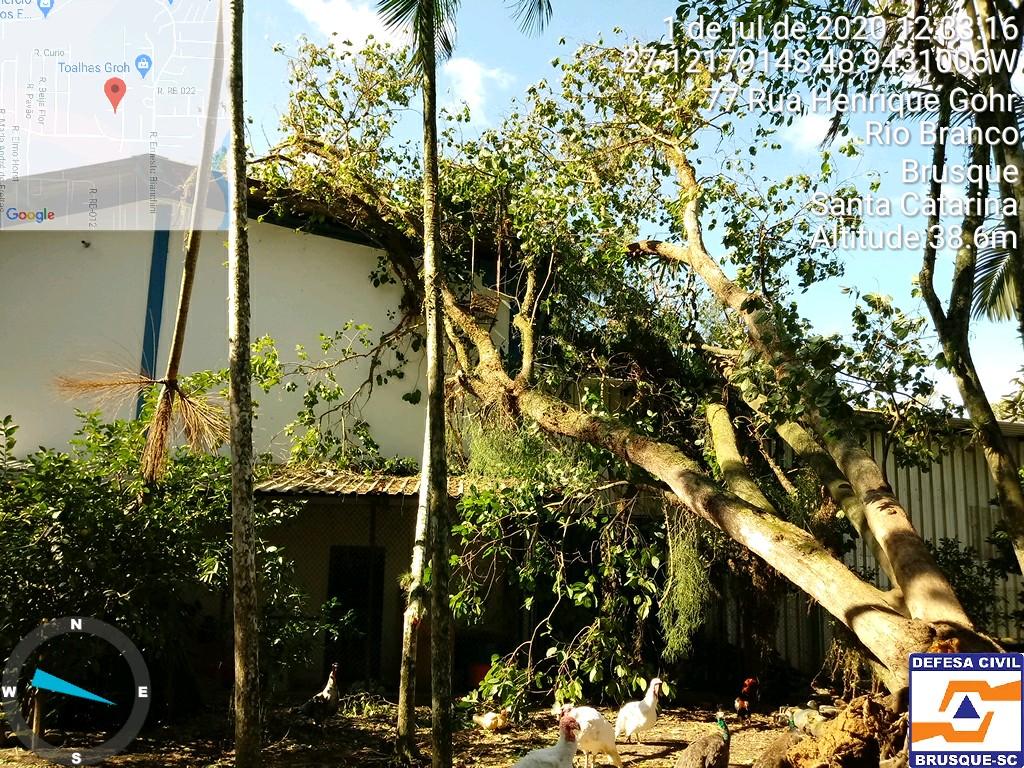 Ciclone Bomba: Defesa Civil de Brusque realiza chamamento público para cadastro de residências atingidas