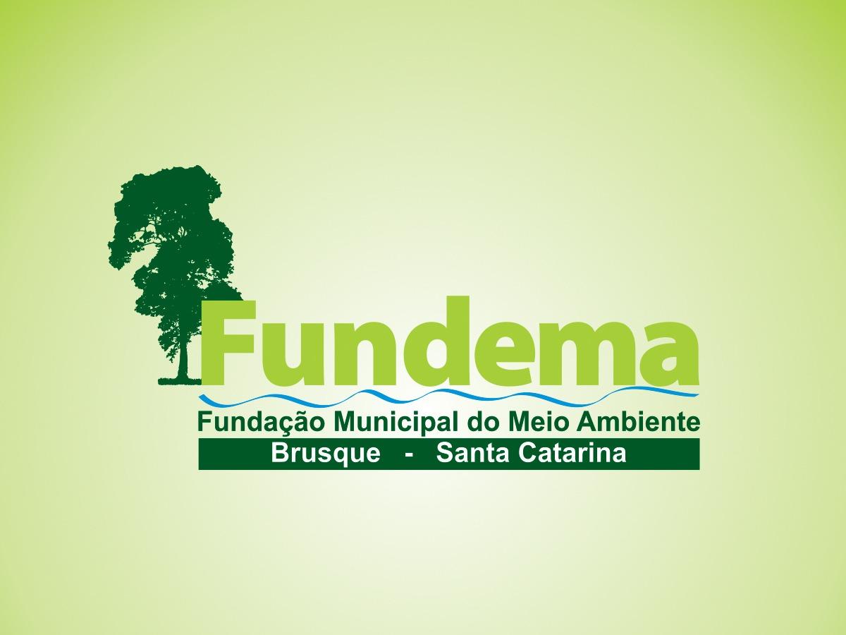 Com prêmio internacional, Fundema tem ano positivo apesar de pandemia