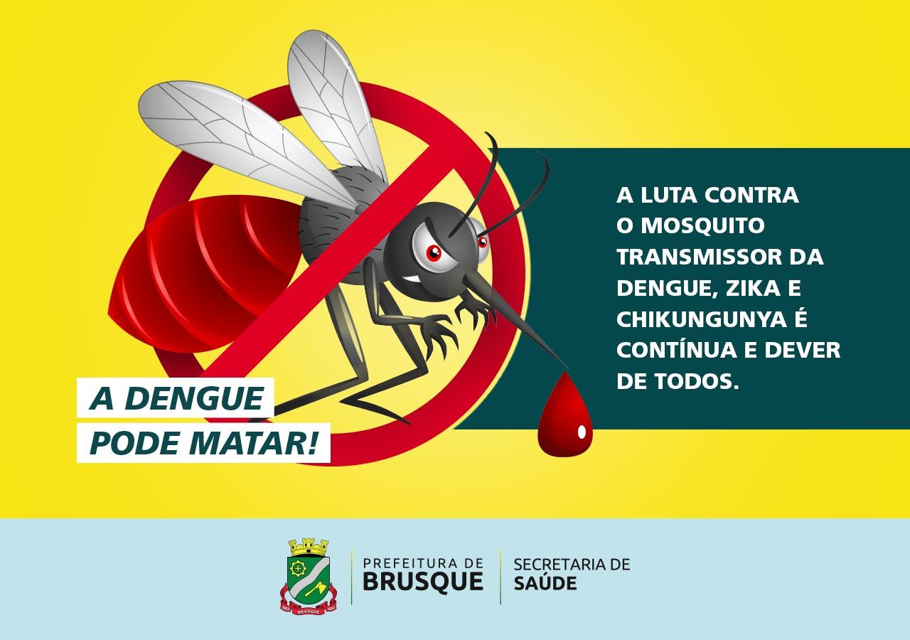 Brusque é considerado local de baixo risco para transmissão da dengue
