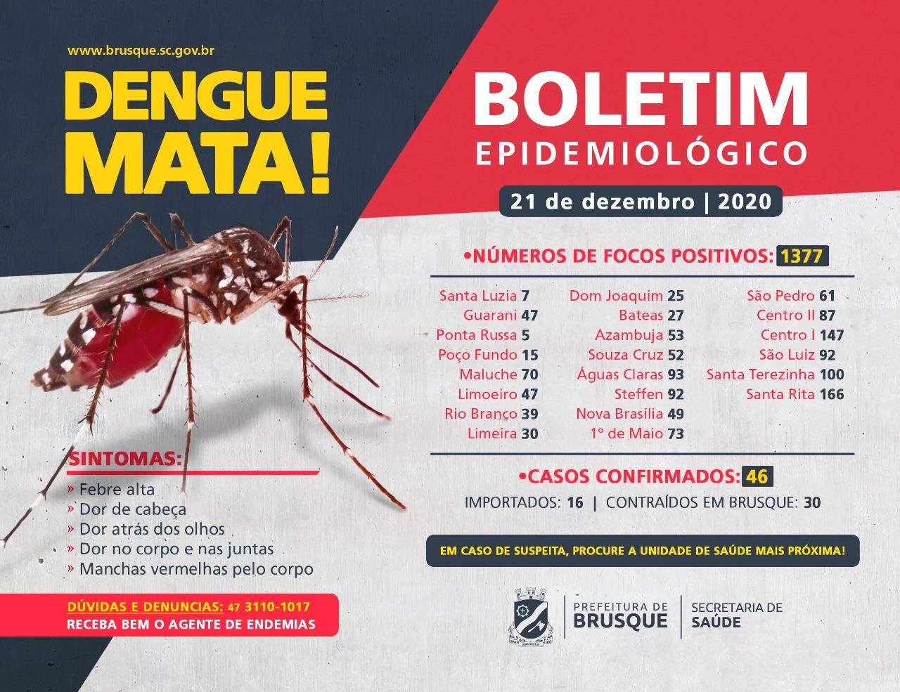 Confira o boletim epidemiológico da dengue desta segunda-feira (21)