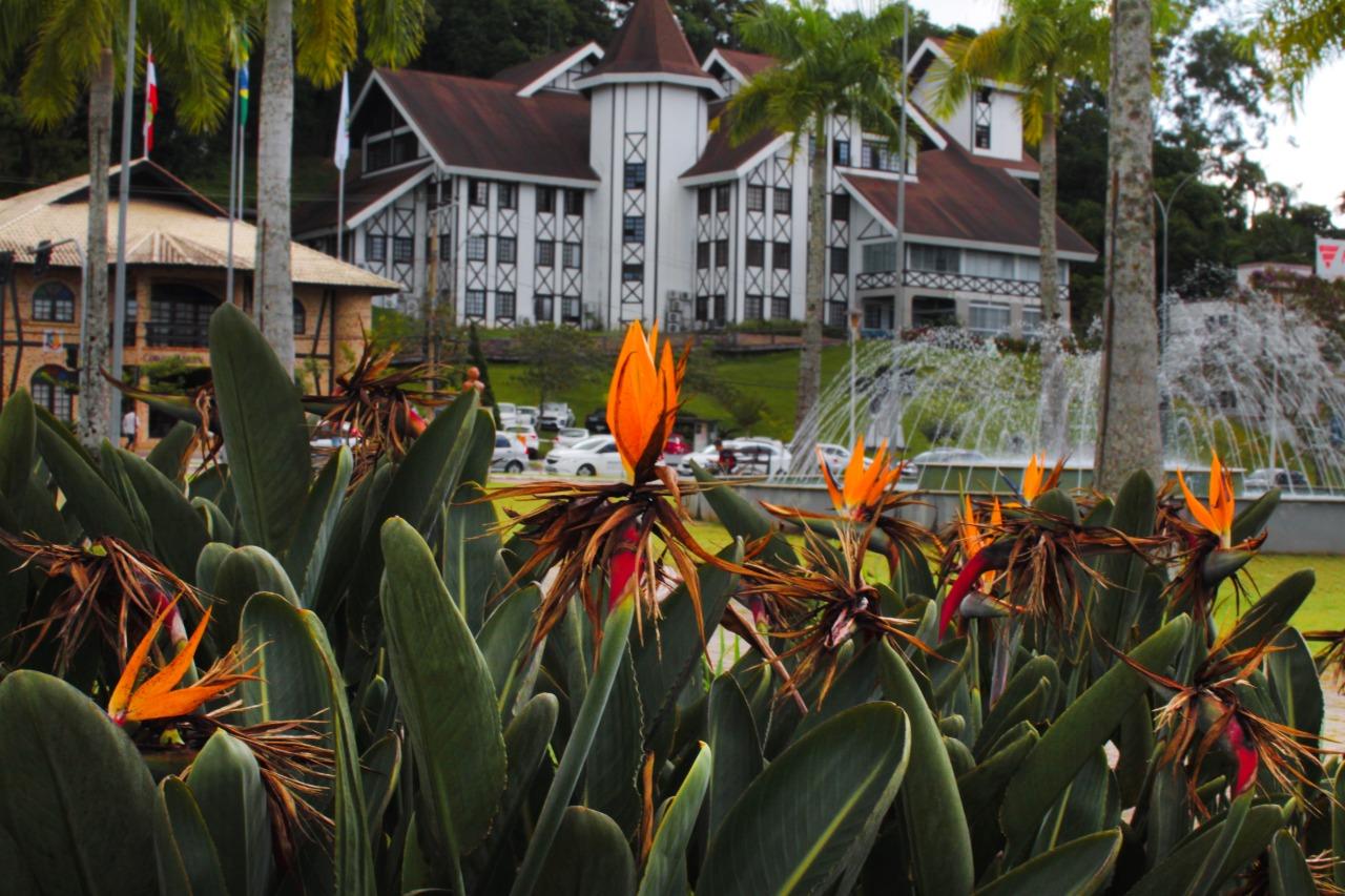 Prefeitura inicia nova etapa de paisagismo nas praças e áreas verdes do município