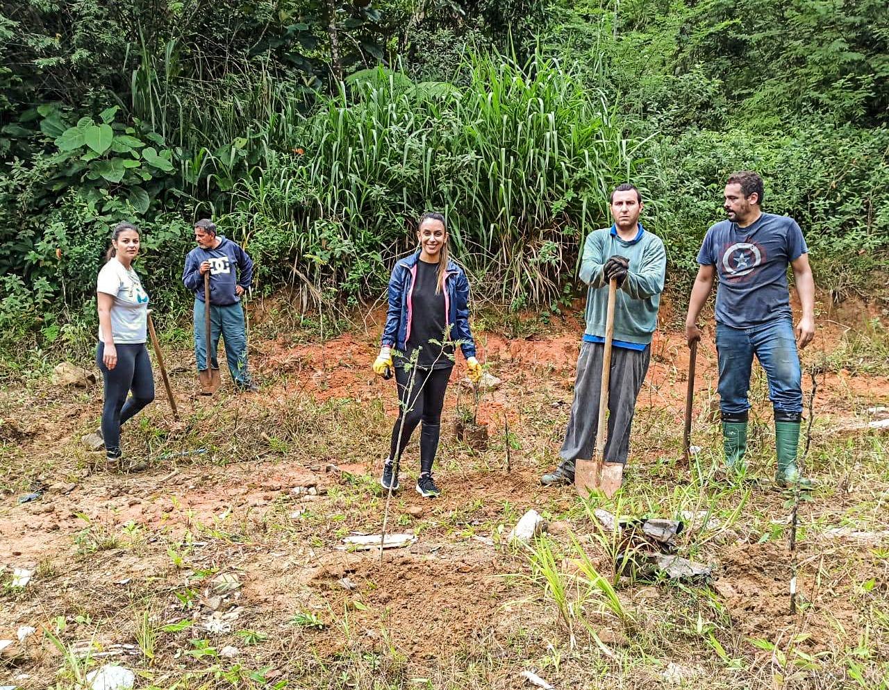Cogemas Brusque realiza plantação de Ipê e Pau Brasil no Limeira