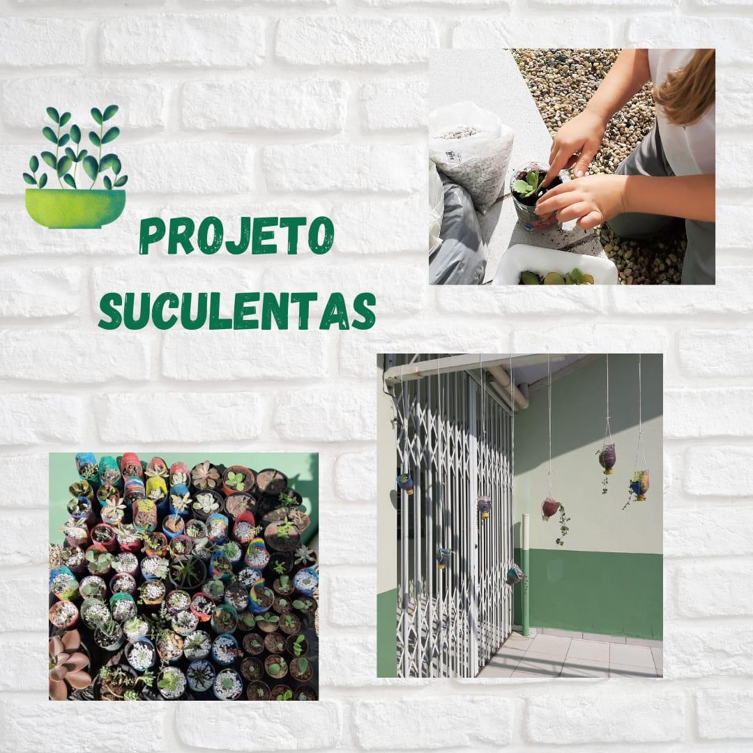 Alunos da rede pública municipal plantam suculentas em projeto escolar de Brusque
