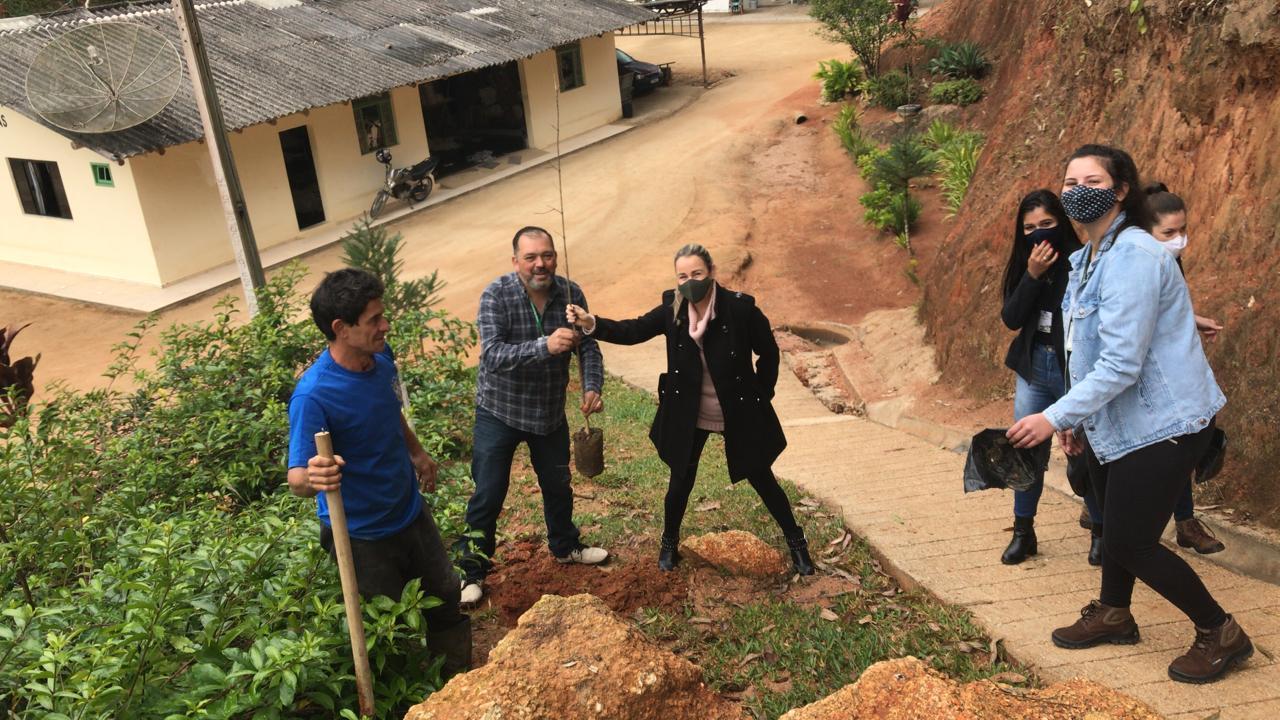 Equipe da Fundema planta árvores nativas